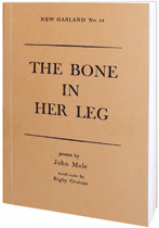 Poetry book by John Mole
